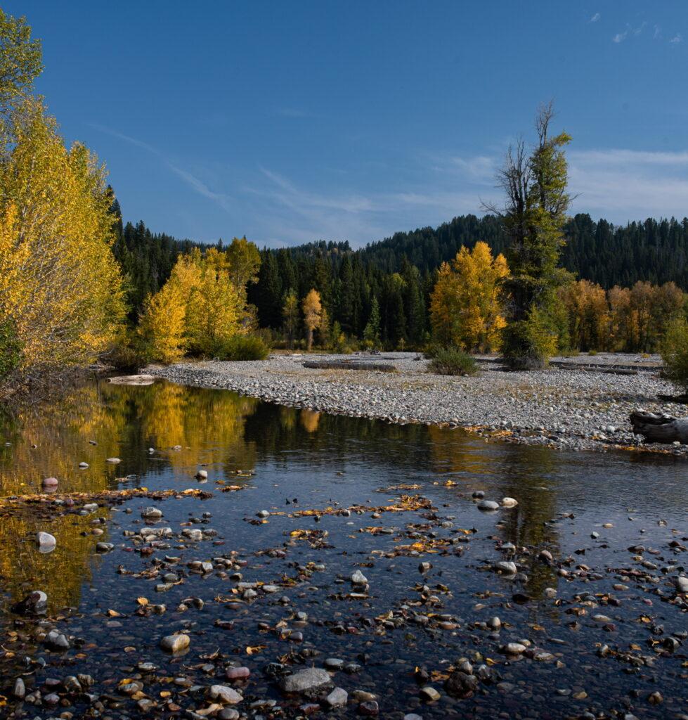 Fall Colors Photo Workshop Pilgrim Creek Wyoming Grand Teton National Park Photo Masters Workshops